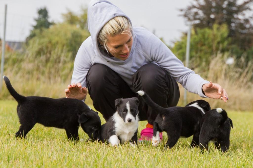 ultimate-pups-6-weken-14